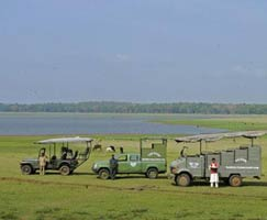 Kabini Honeymoon Trip