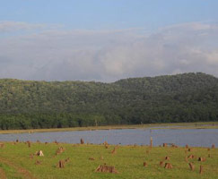 Kabini Honeymoon Tour Package