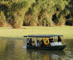 Honeymoon In Kabini